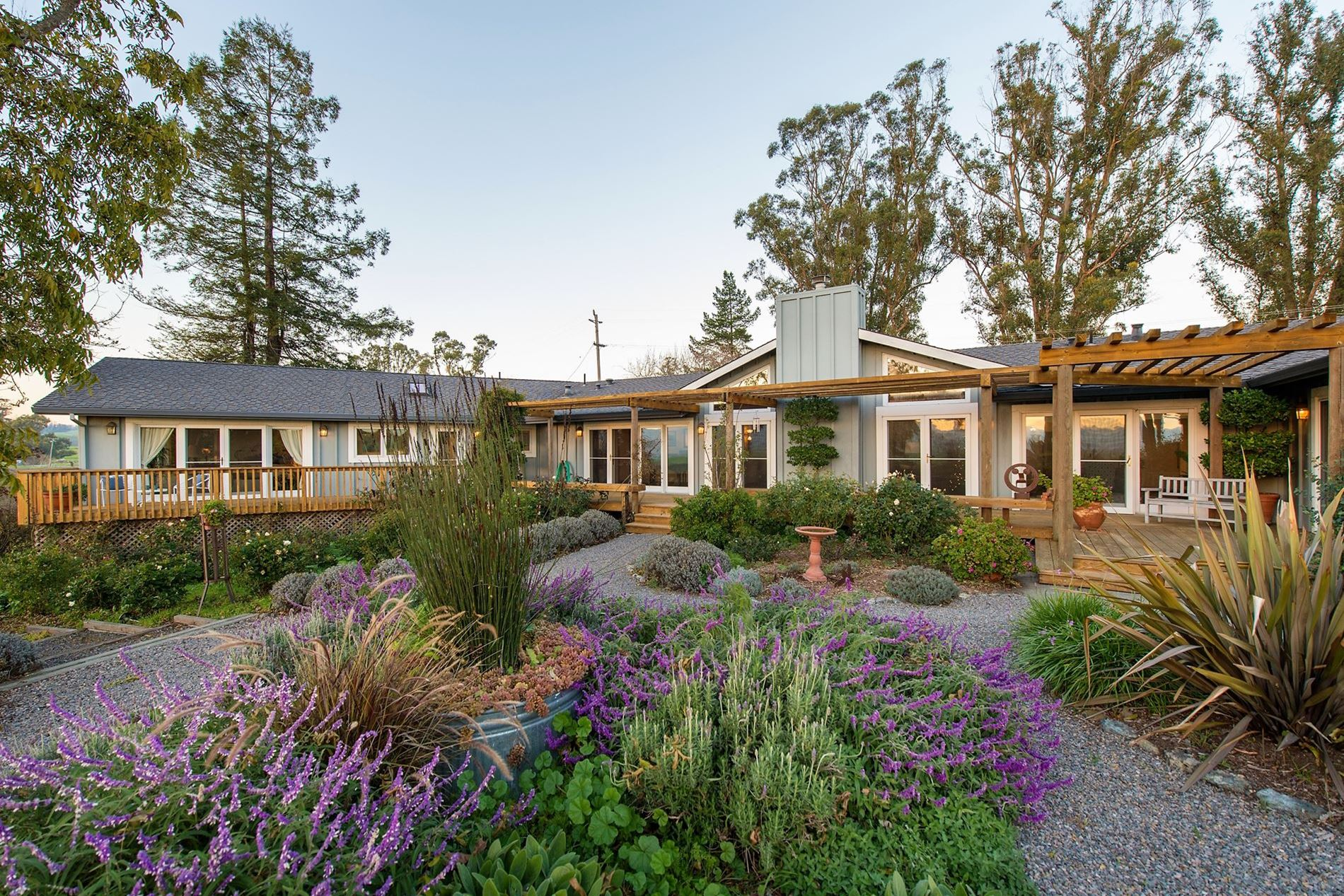 Old Lakeville No 3 Road Petaluma Horse Property