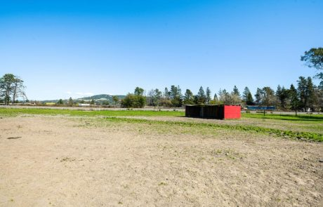 225 Scenic Avenue Santa Rosa Horse Property 18