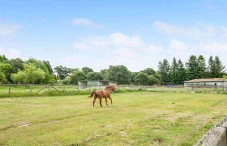 795 Edwards Lane Sebastopol Horse Property 37