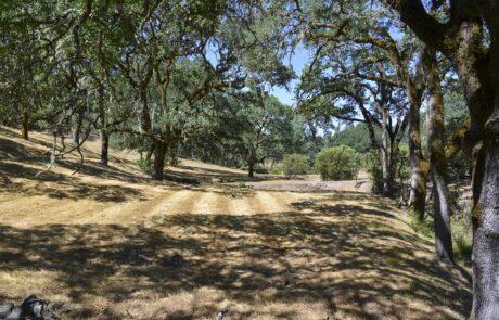 Loch Haven Drive Santa Rosa Land
