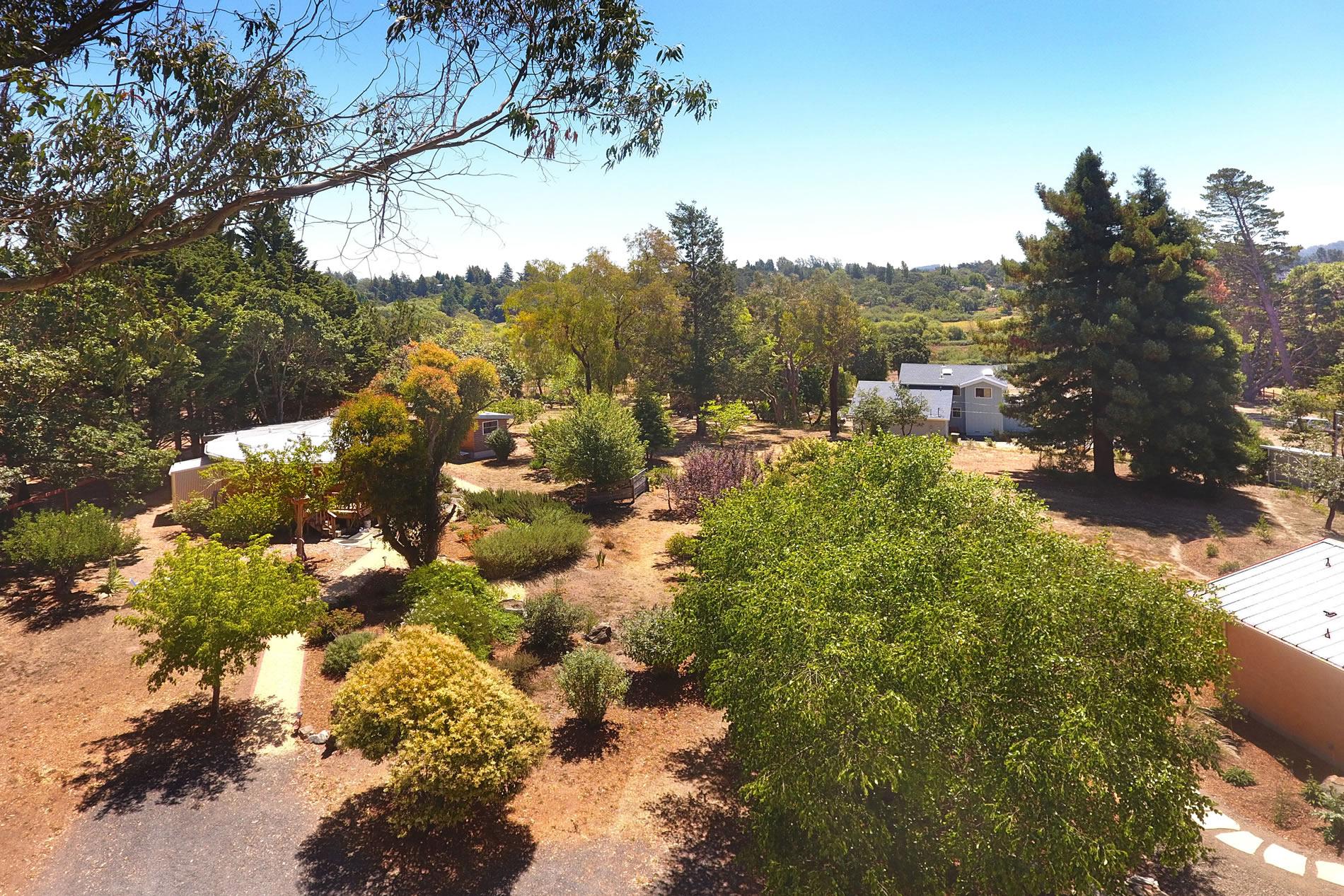 145 Lone Oak Lane Sebastopol Country Estate