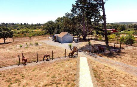 145 Lone Oak Lane Sebastopol Country Estate ZGA
