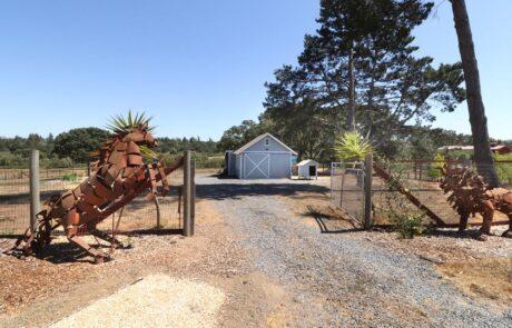145 Lone Oak Lane Sebastopol Country Estate ZGB