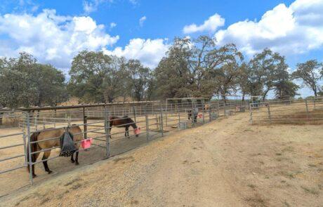 4072 W Olivet Rd Santa Rosa Horse Property 18