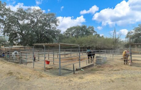 4072 W Olivet Rd Santa Rosa Horse Property 21