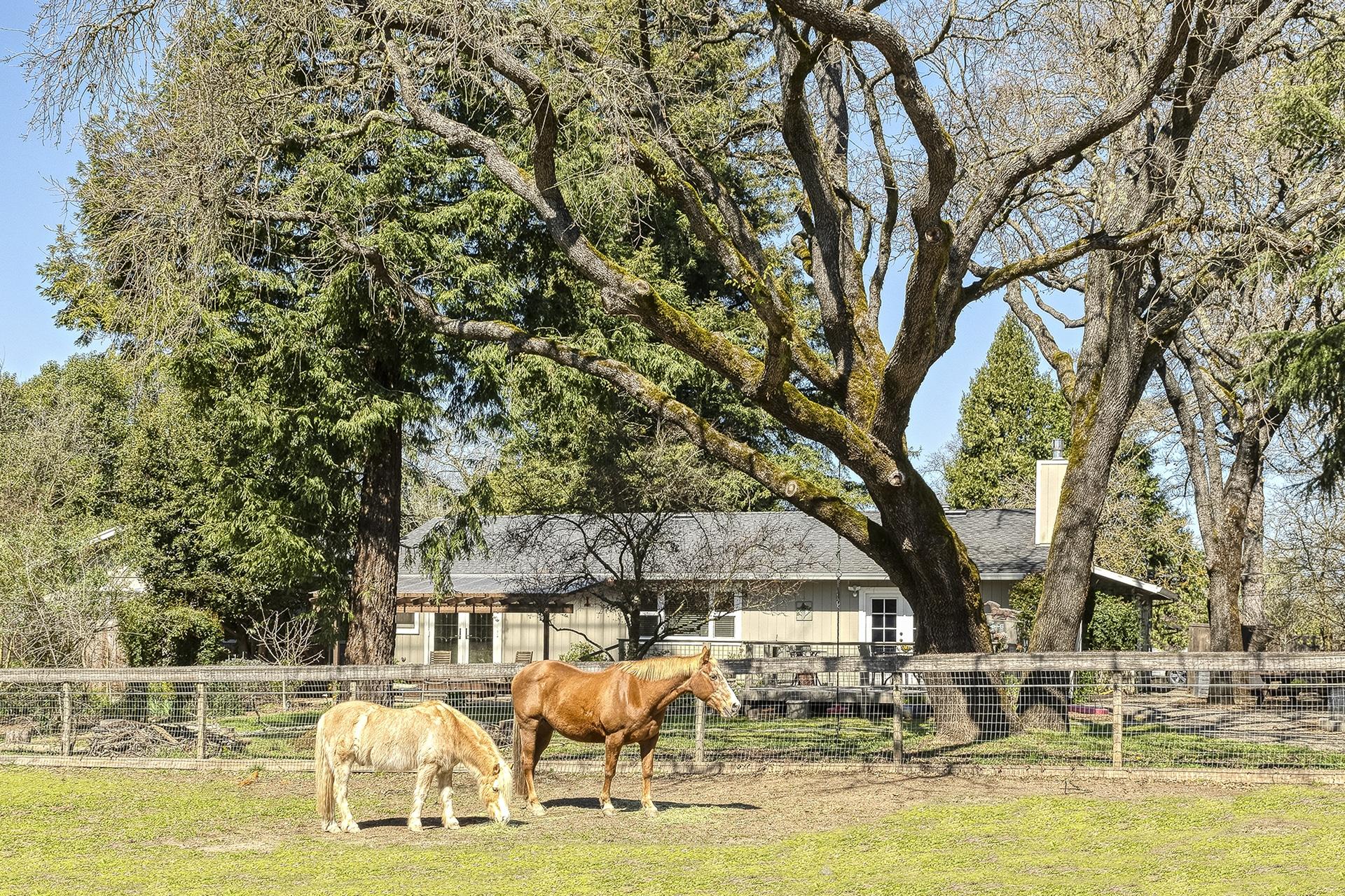 2475 Olivet Road Santa Rosa Horse Property