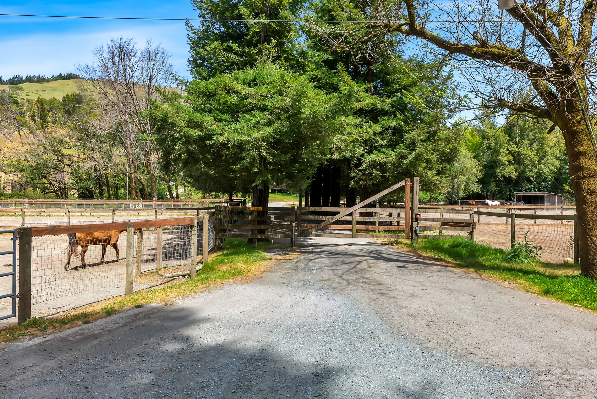 700 Nicasio Valley Road Nicasio Horse Property
