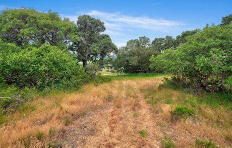 1004 Chileno Valley Road Petaluma Horse Property